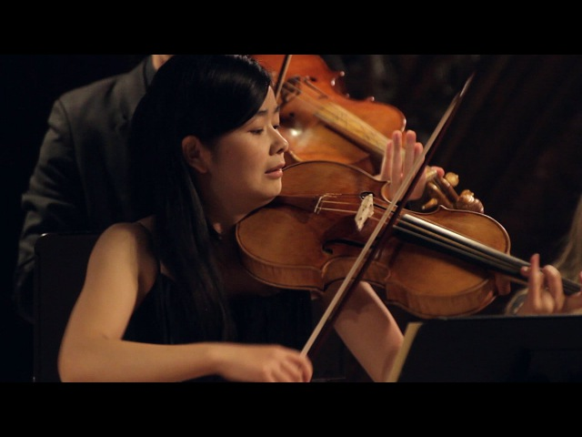 G.Ph. Telemann Concerto in G major for Viola, Strings and Basso continuo, TWV 51G9