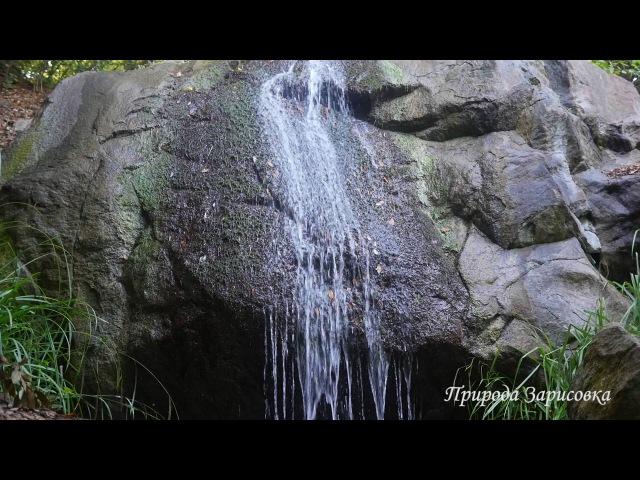 Звуки Горного Ручья ~ Журчание воды со Звуками природы ~ 🌿