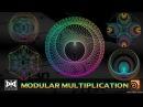 VMT 038 - HOUDINI - Modular Multiplication