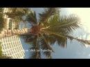 Tom Reichel--Träum dich ins Paradies--Offizielles Musikvideo