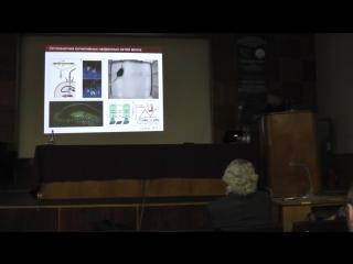 Эволюция высших функций нервной системы (Константин Владимирович Анохин)