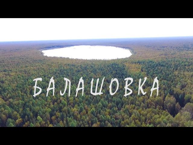 Балашовка Фильм 3 Вся правда о путинской деревне