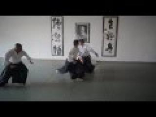 Haruo Matsuoka Aikido - Hand Movement Practice for Randori