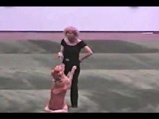 Dog and owner perform a cute grease dance routine. [video]