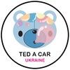 Парфюмированные ароматизаторы Ted A Car