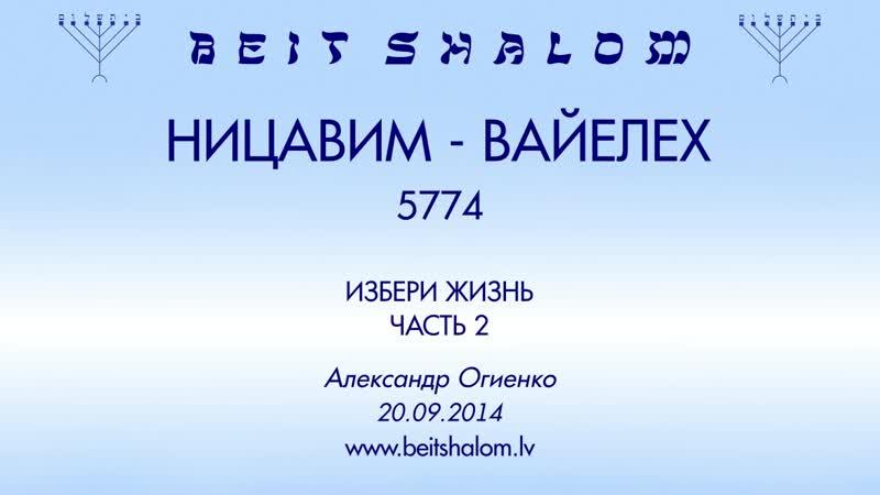 НИЦАВИМ ВАЙЕЛЕХ 5774 часть 2 ИЗБЕРИ ЖИЗНЬ А Огиенко 20 09 2014