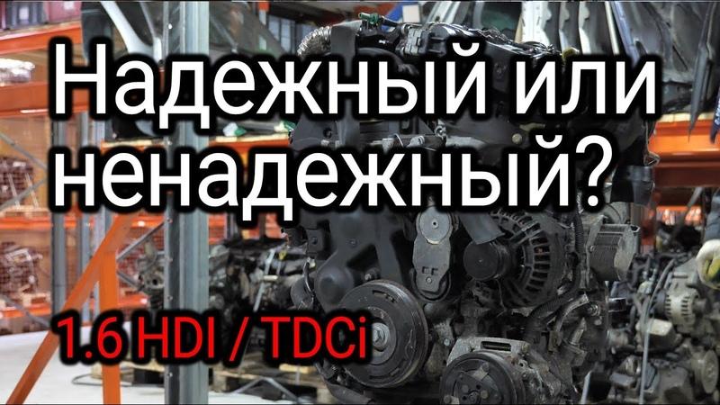 Надежный или ненадежный Обсуждаем и показываем проблемы двигателя 1 6 HDI TDCI DV6TED4
