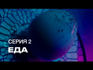 S7 Airlines | Инопланетное шоу Посетите Землю. 2 Серия: Еда
