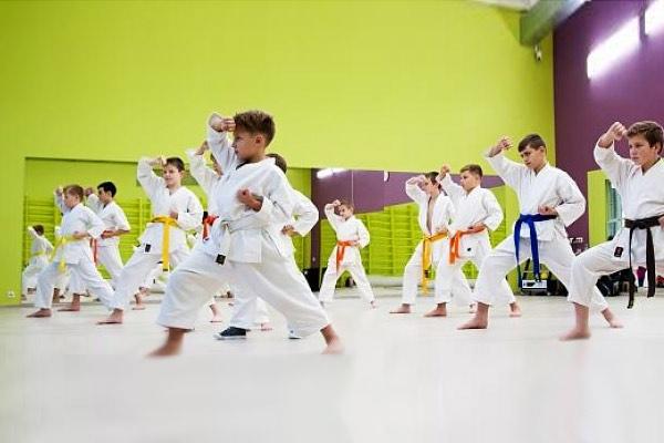 90 бесплатных спортивных секций для детей в Новосибирске, изображение №2