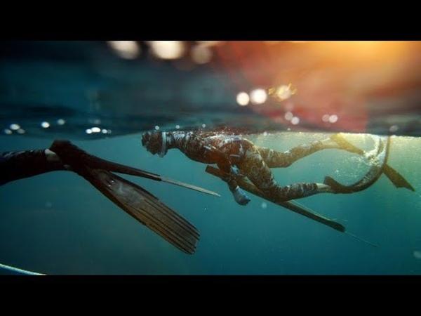 Подводная Охота. Прозрак