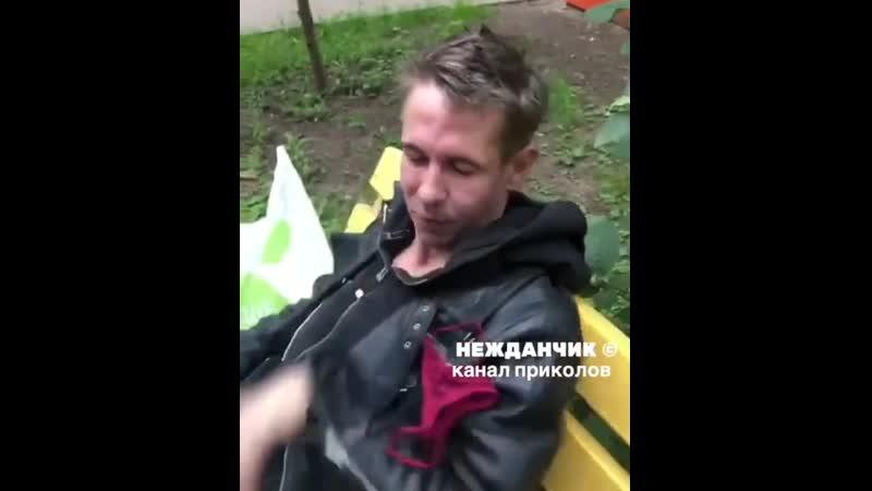 Алексей Панин женские трусы не повод для ревности это мои трусы