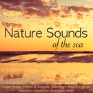Обложка The Sound of the Sea, Waves and Seagulls - Relaxing Sounds of Nature for Deep Relaxation and Calm Mind - Tranquil Music Sound of Nature