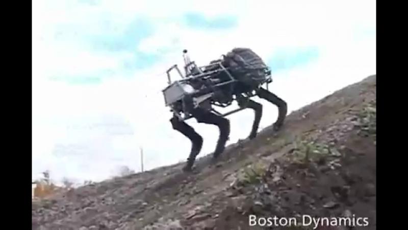 Роботот бедняжка
