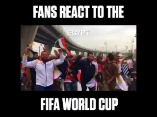 The World Cup has sparked absolute scenes around the globe..