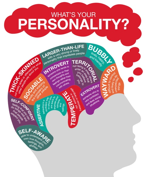 infographic whats-your-personality
