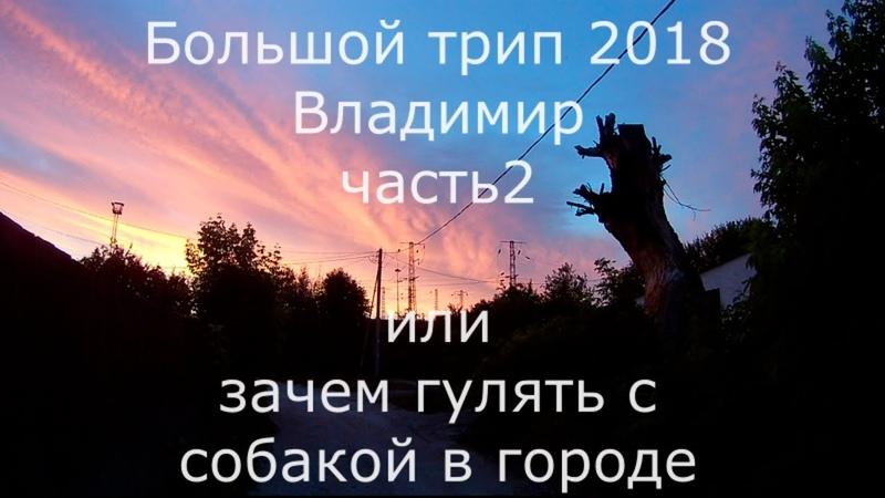 Большой трип 2018 Владимир часть 2 или зачем собаке прогулки в городе