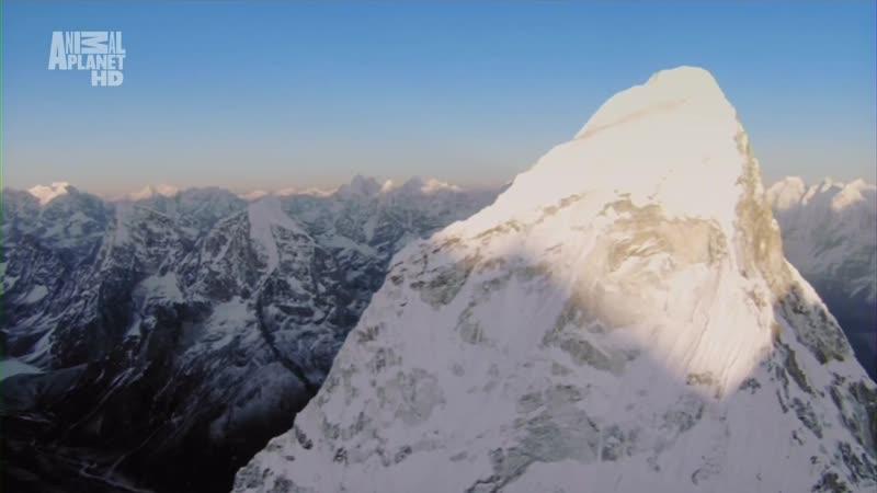 В дебрях Индии Фильм 3 Гималаи Испытание вершинами 2011г