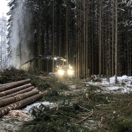 """Lissjanis Skog AB Nås on Instagram: """"Nu är julgranen äntligen huggen. jul julgran christmas christmastree ponsseloggers siljan siljanskog s..."""