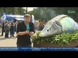 Секреты шеф-поваров: как правильно приготовить рыбу