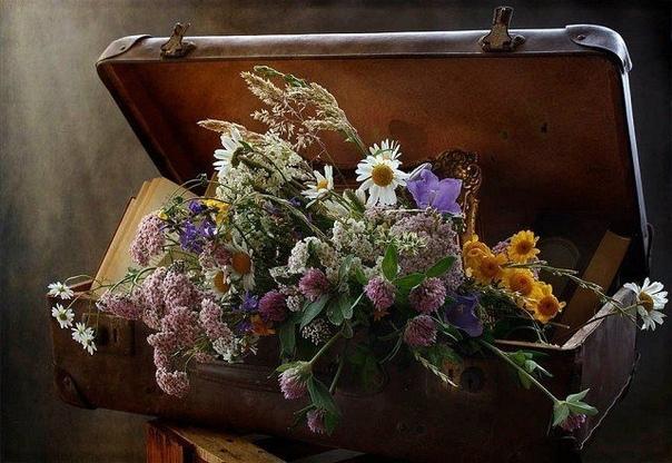 Пакует чемоданы ЛЕТО: жару, цветы кладет в пакеты, и стопкой ровной