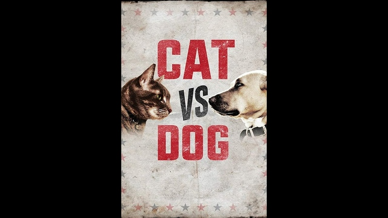 Кошка против собаки Cat Vs Dog 2017 5 серия Animal Planet