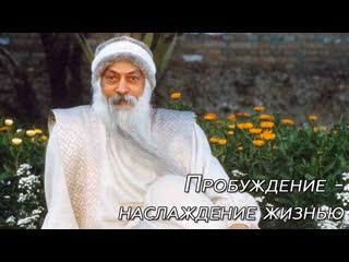 Пробуждение - это возможность наслаждаться простотой жизни)