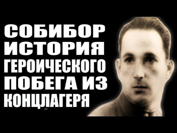 Собибор: история успешного побега из лагеря смерти. Александр Печерский – организатор восстания.