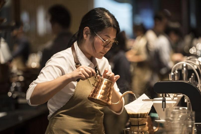 Пьют ли китайцы кофе?, изображение №7