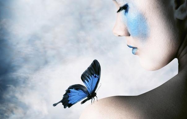 Приметы о бабочках.