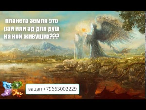 247. планета земля рай или ад для душ на ней живущих??