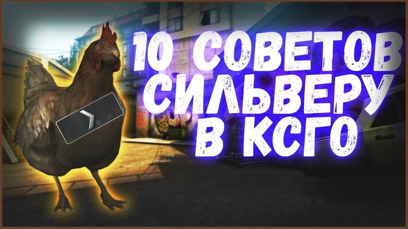 10 СОВЕТОВ НОВИЧКУ\СИЛЬВЕРУ В КСГО