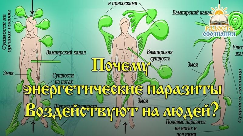 Почему энергетические паразиты воздействуют на людей?