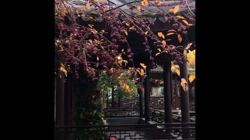 Китайский сад в Портланд Орегон