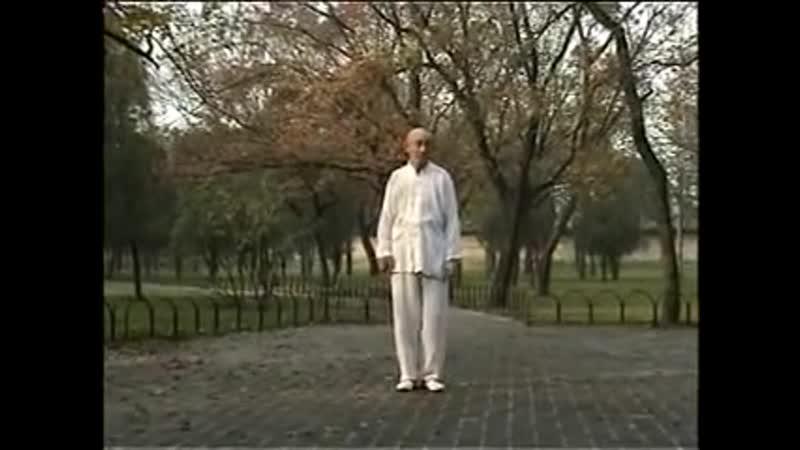 Шан ши синъицюань мастер Цуй Гуогуй