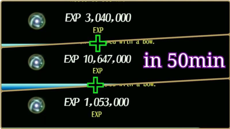 Toram secret quest 14M Exp in 50min