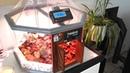 TerraDome : fabriquez une mini serre tropicale avec Arduino