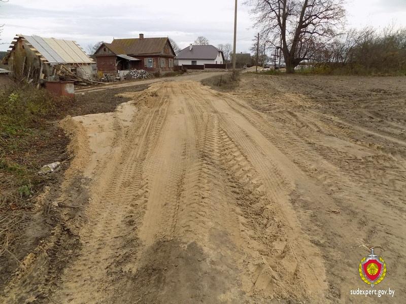 В Каменецком районе на дороге обнаружены костные останки