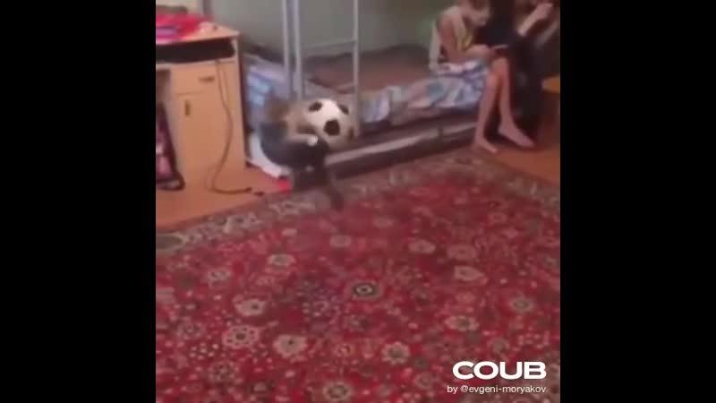 Буффонище! Кот вратарь!
