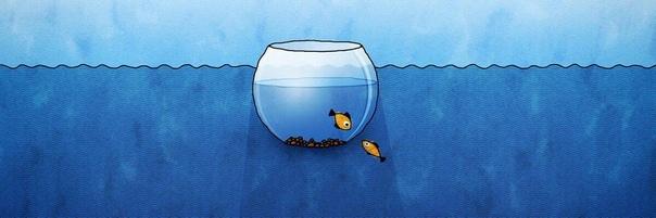 Зона комфорта: выйти или остаться