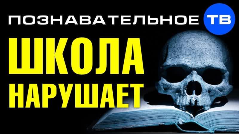 Школа НАРУШАЕТ ЗАКОН Вас УМЫШЛЕННО делают больными и сутулыми Познавательное ТВ Артём Войтенков