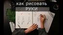 Как рисовать руки. Кисти рук простым языком. Скетчинг для начинающих