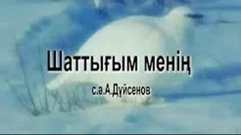 Караоке Шаттығым менiң