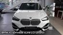 BMW X1 sDrive18i xLine LCI 2020 Exterior and Interior Walkaround