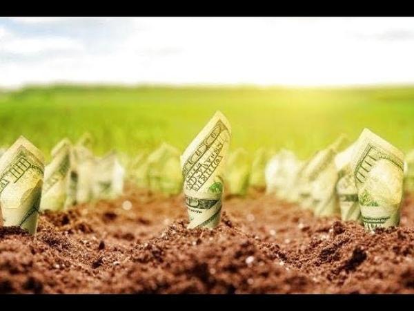 Продаж землі готуйтесь вже сьогодні бо маєте виграти ви