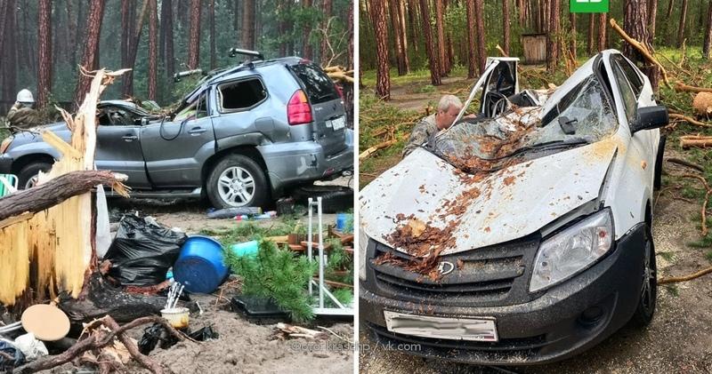 В Сибири во время грозы деревья упали на палатки с людьми и убили человека