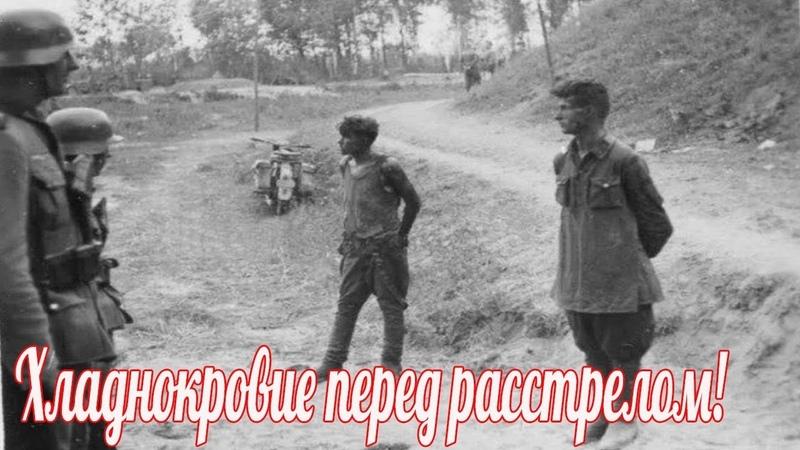 Они смеялись над немцами перед расстрелом Военные истории Великой Отечественной Войны