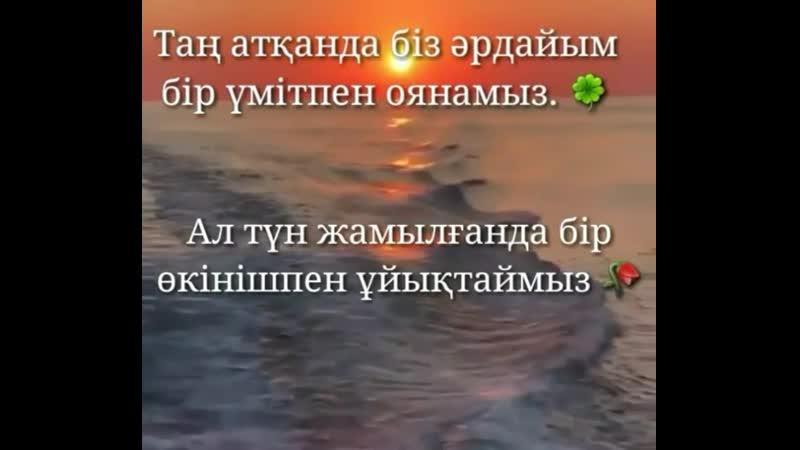 T.o.m.p.i_kzB42jkGhFGWv.mp4