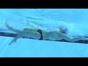 8 Great Backstroke Arm Drills