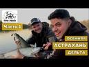 Рыбалка в дельте Волги Спиннинг Осень Часть первая Рыболовный канал Три Реки