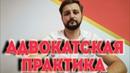 Адвокатская практика. Николай Щербаков. Дело Болотниковой